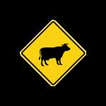 ขับรถช้าลง และเพิ่มความระมัดระวัง ทางข้างหน้าอาจมีสัตว์ข้ามทาง